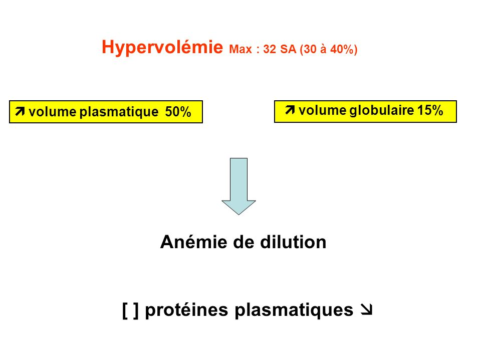 [ ] protéines plasmatiques 